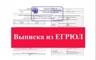 Как заказать и получить выписку из ЕГРЮЛ при помощи ЭЦП