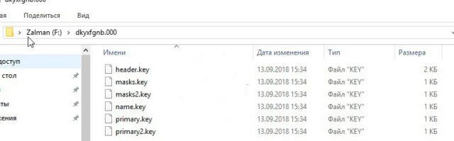 Папка на флешке с ключами эцп