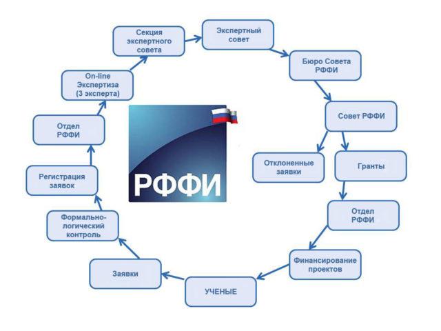 Структура РФФИ