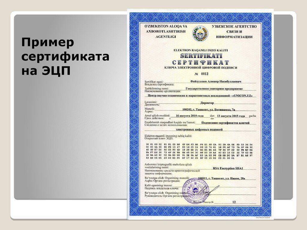 сертификат эцп картинка них объединяет отдел